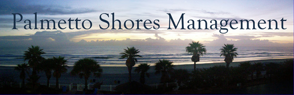 palmetto shores management